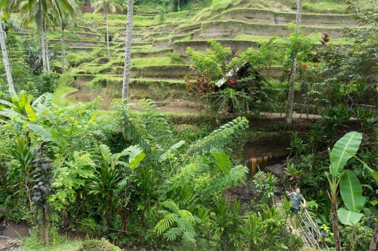 Bali-103