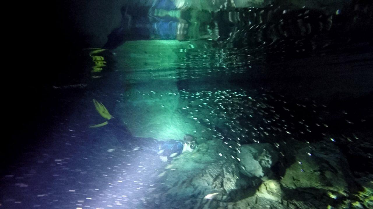 Tulum Cenote Martin