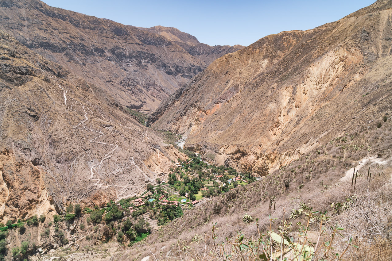 Colca Canyon Oase 2