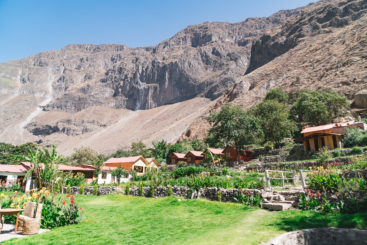 Colca Canyon Oase
