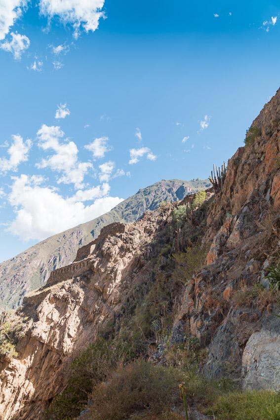 Cusco-07548