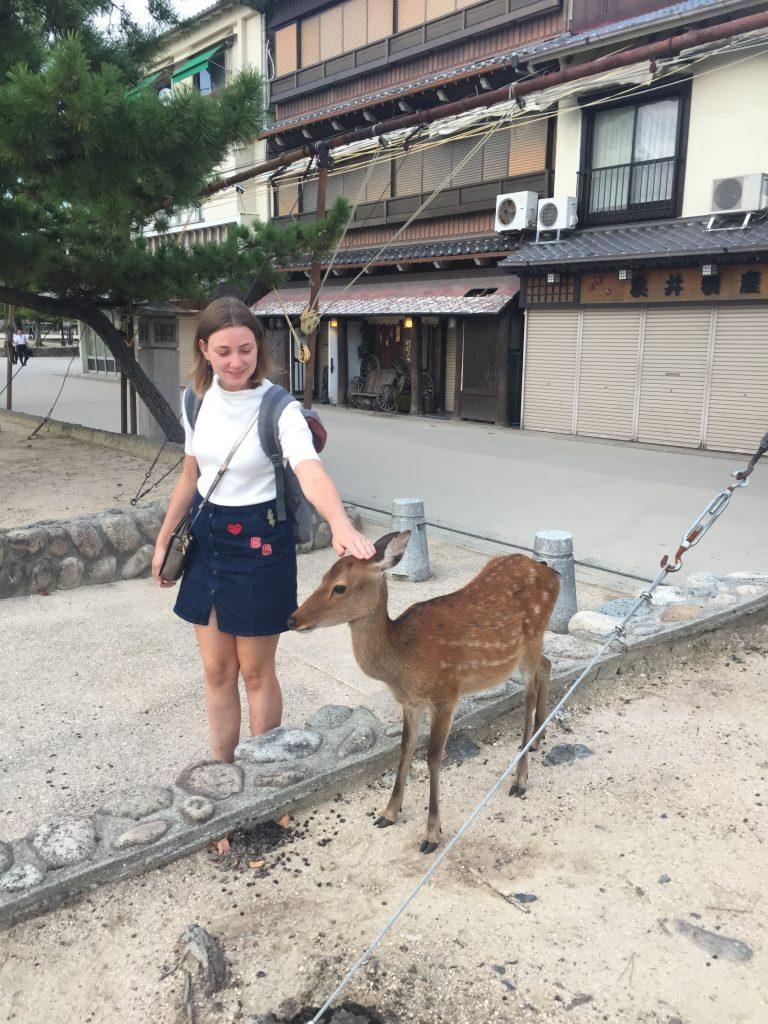 Miyajima Bambi