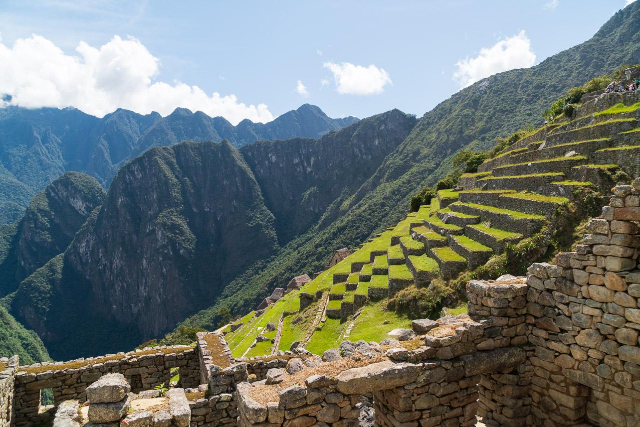 Machu Picchu-07340