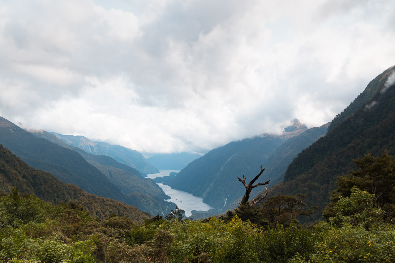 Doubtful Sound Aussicht