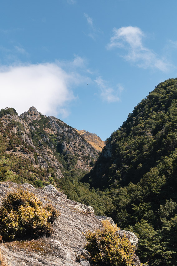 Isthmus Peak Weg