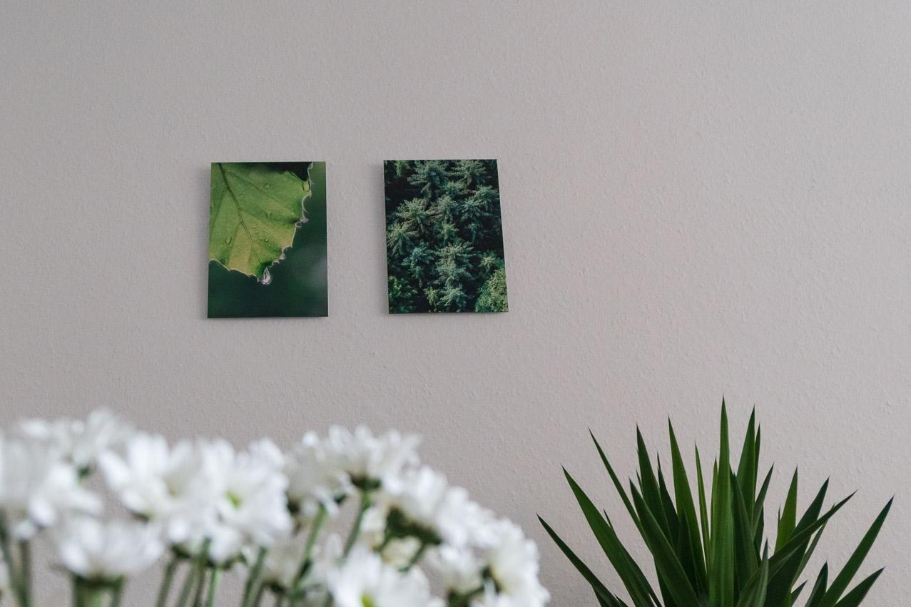 Saal Digital Wandbilder