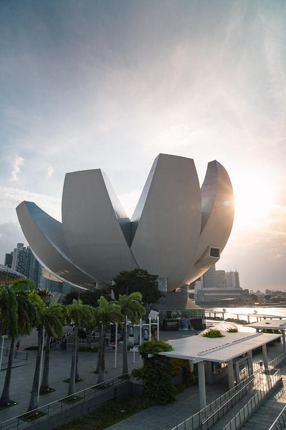 Singapur Gebäude Blüte