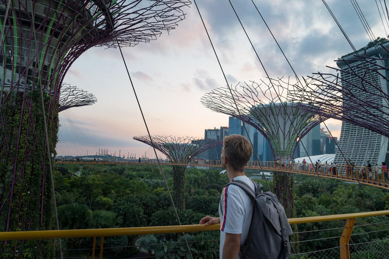 Singapur Supertree Grove